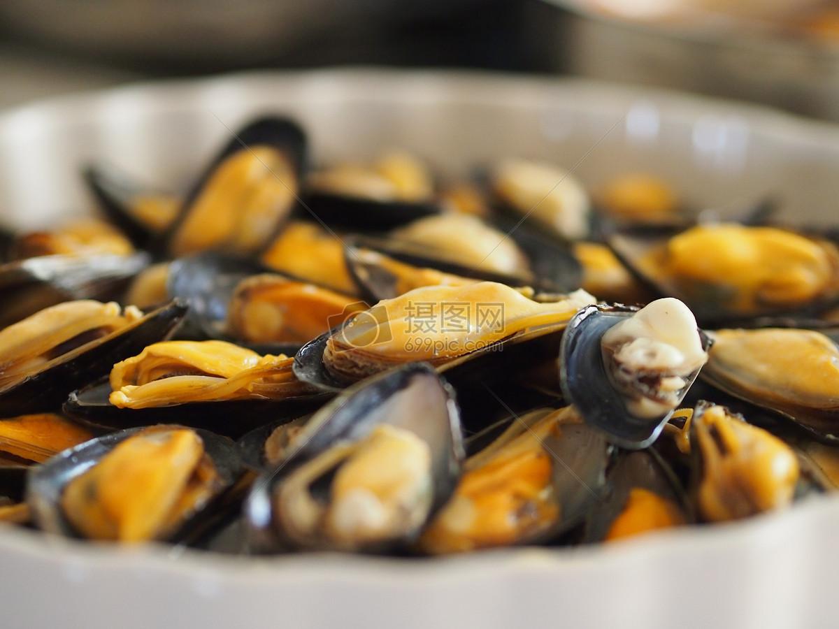 软体动物花蛤图片