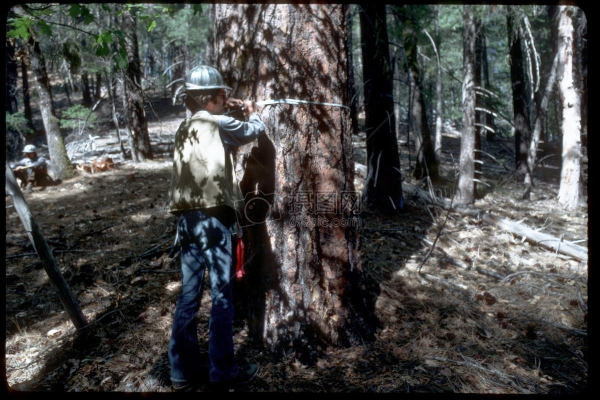 大刀亂砍的土鱉游戲_亂砍亂伐樹木的危害_亂砍森林寫話