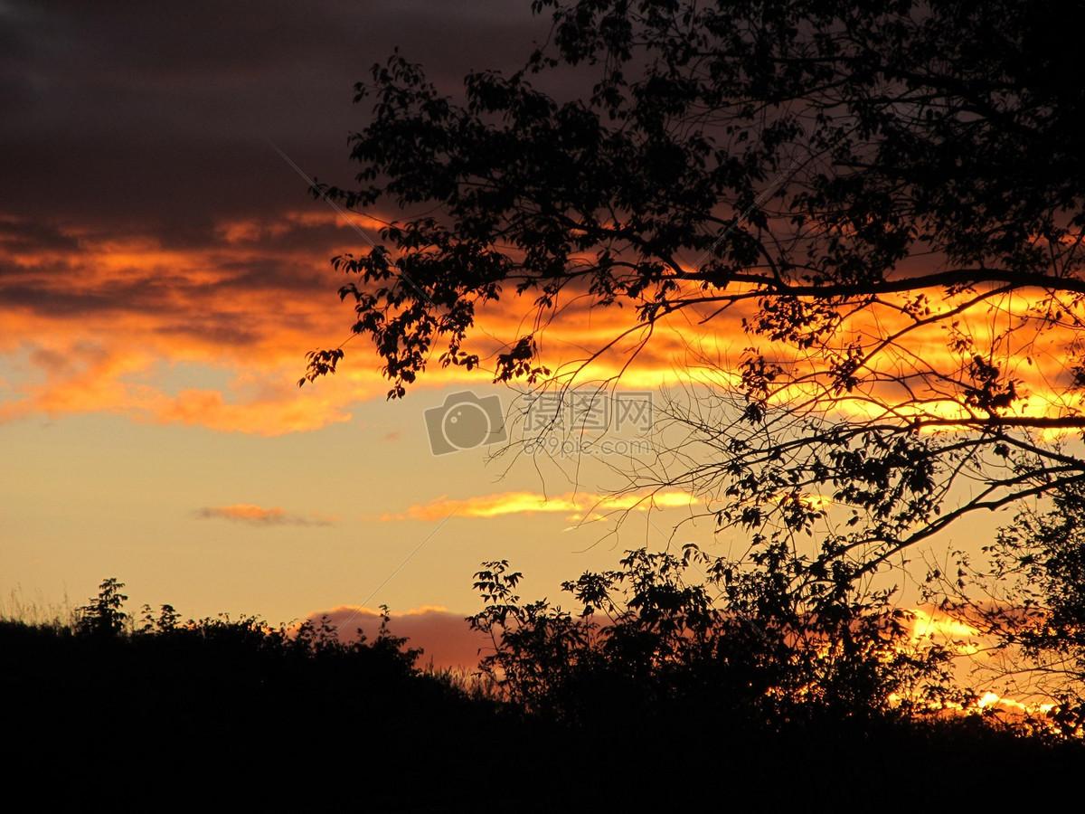 照片 自然风景 夕阳下的树木jpg  分享: qq好友 微信朋友圈 qq空间
