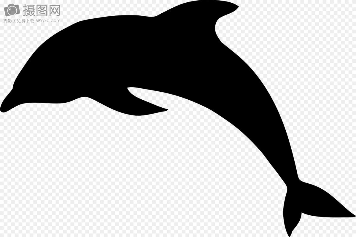 铁丝手工编织海豚