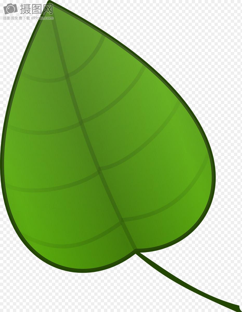 绿色的树叶图片素材_免费下载_svg图片格式_高清图片