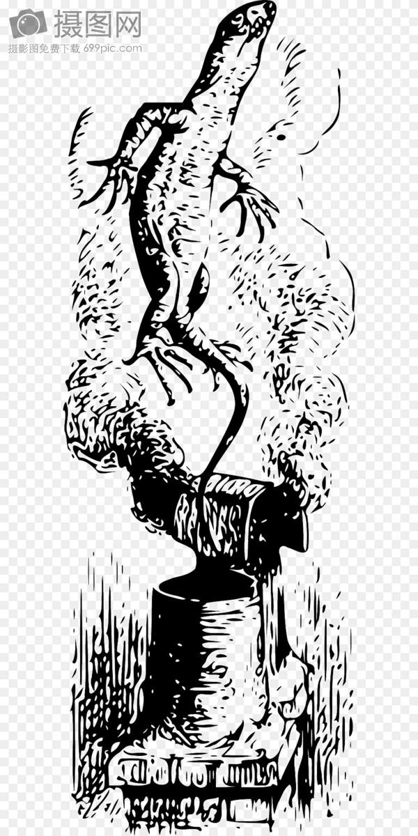 标签: 蜥蜴黑色和白色生物爬行动物免费插画免费矢量图免费图片爬出