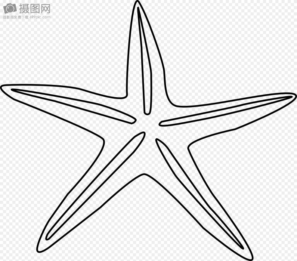 海星怎么画简笔画