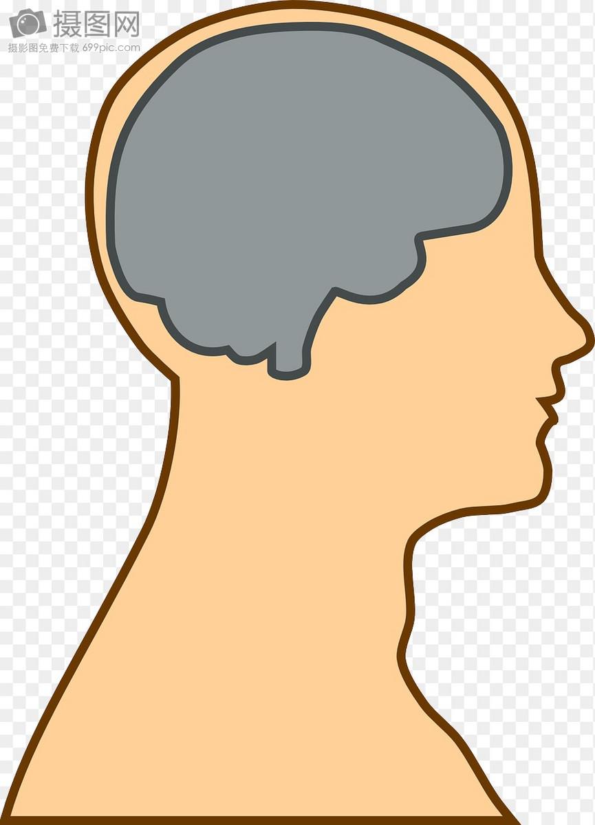 大脑思维图片素材_免费下载_svg图片格式_高清图片_摄