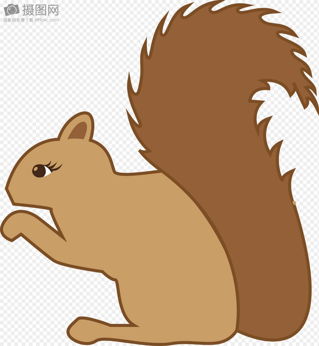 可爱的小松鼠