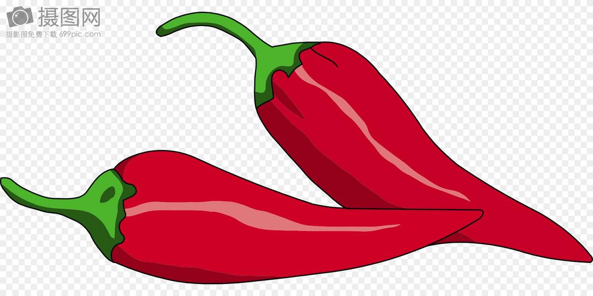 辣椒图片矢量图