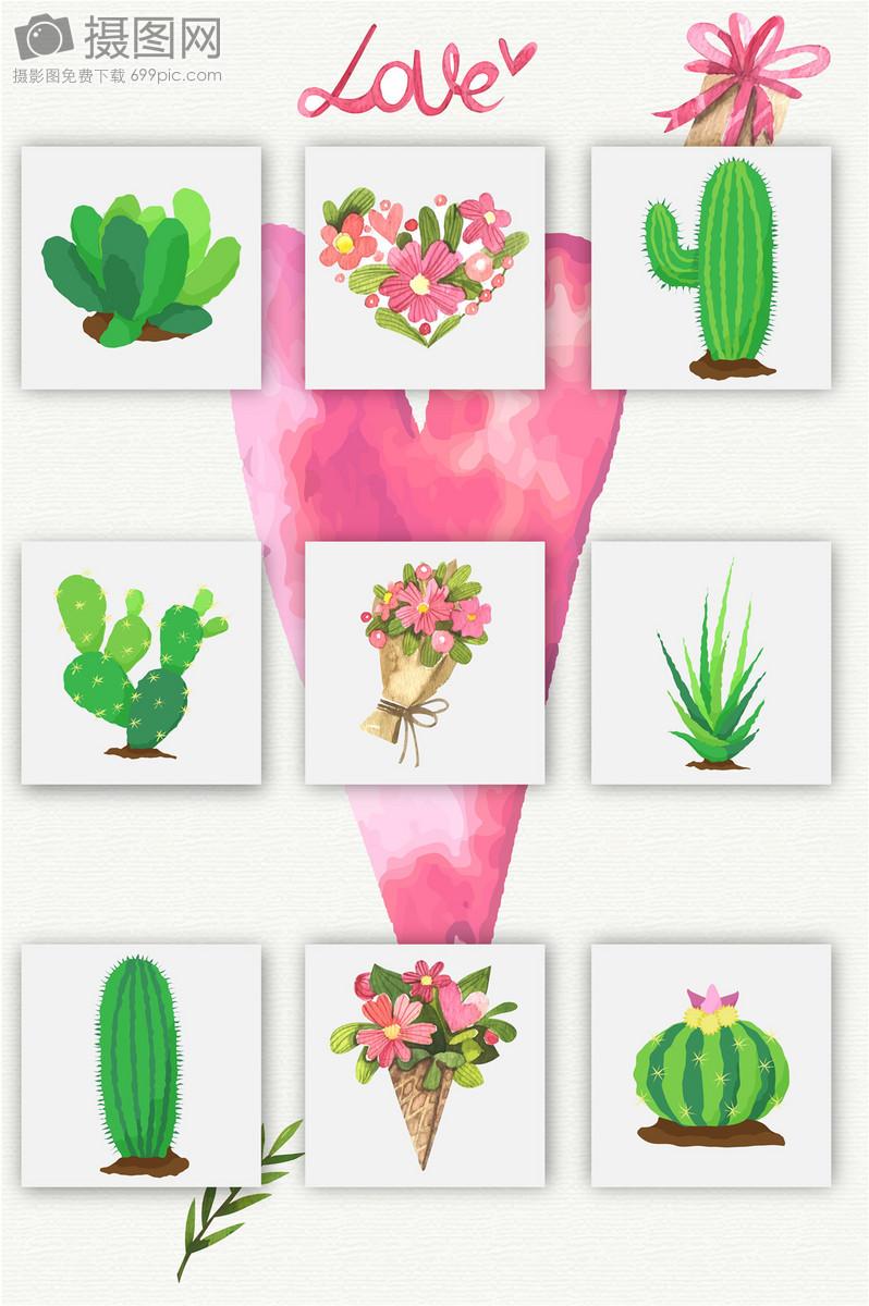 手绘水彩热带雨林仙人掌植物鲜花矢量图
