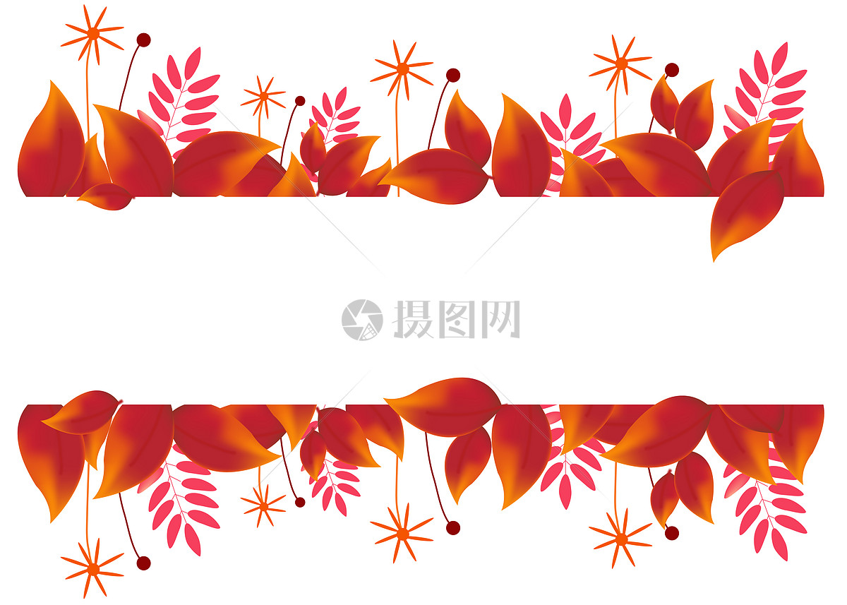 手绘枫叶装饰框图片