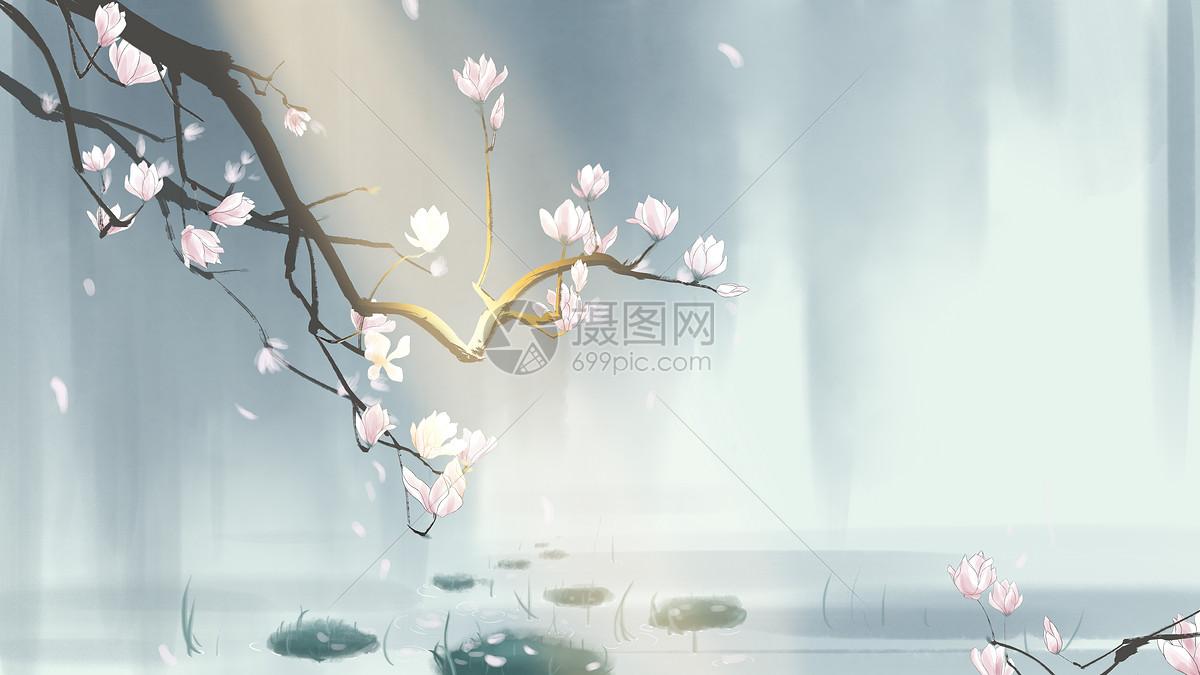 中国风手绘玉兰花插画