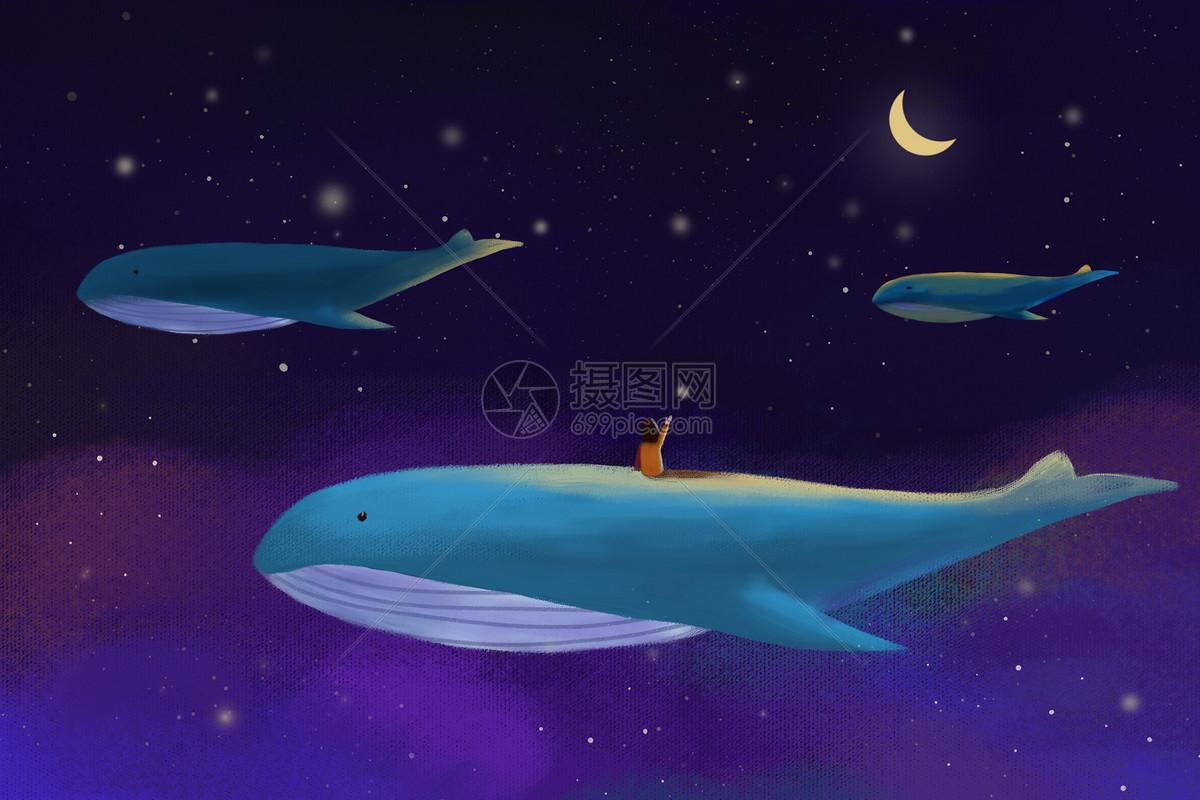 星空下的女孩和鲸鱼