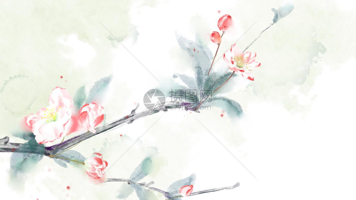 古风海棠花插画