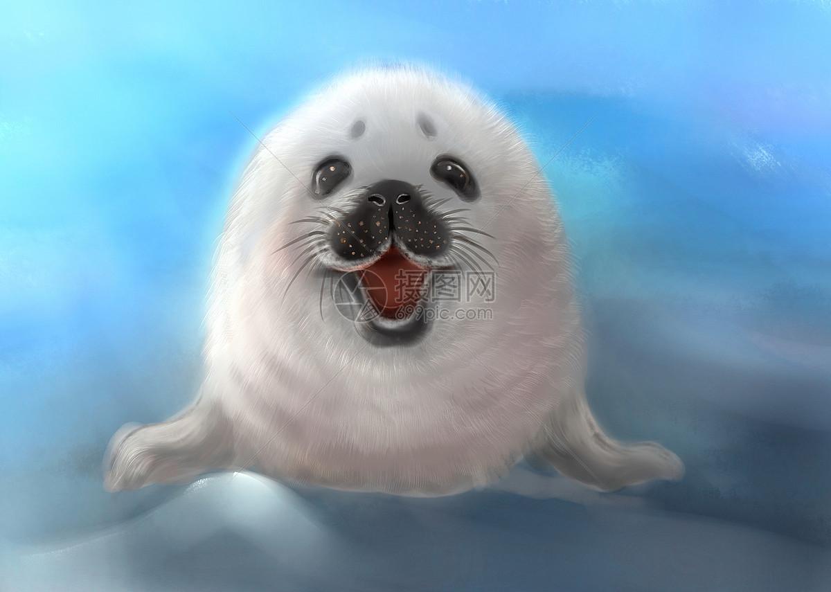 动物的笑脸图片
