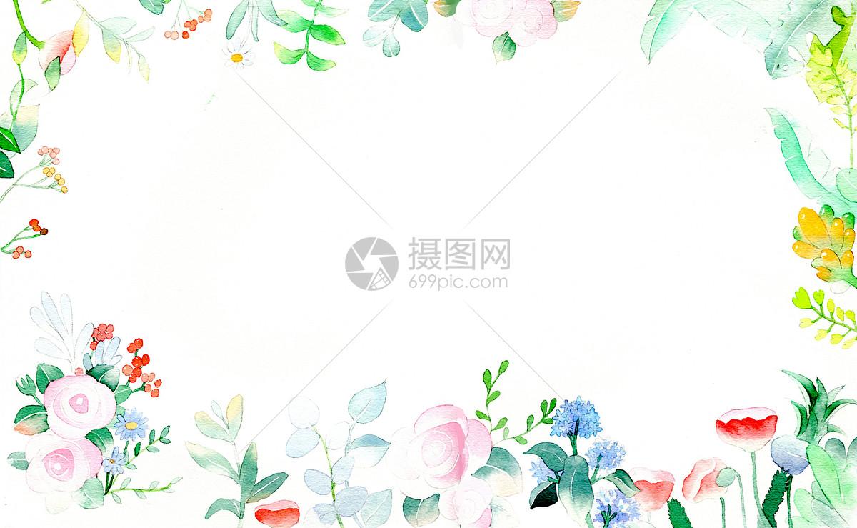 春天植物背景图片