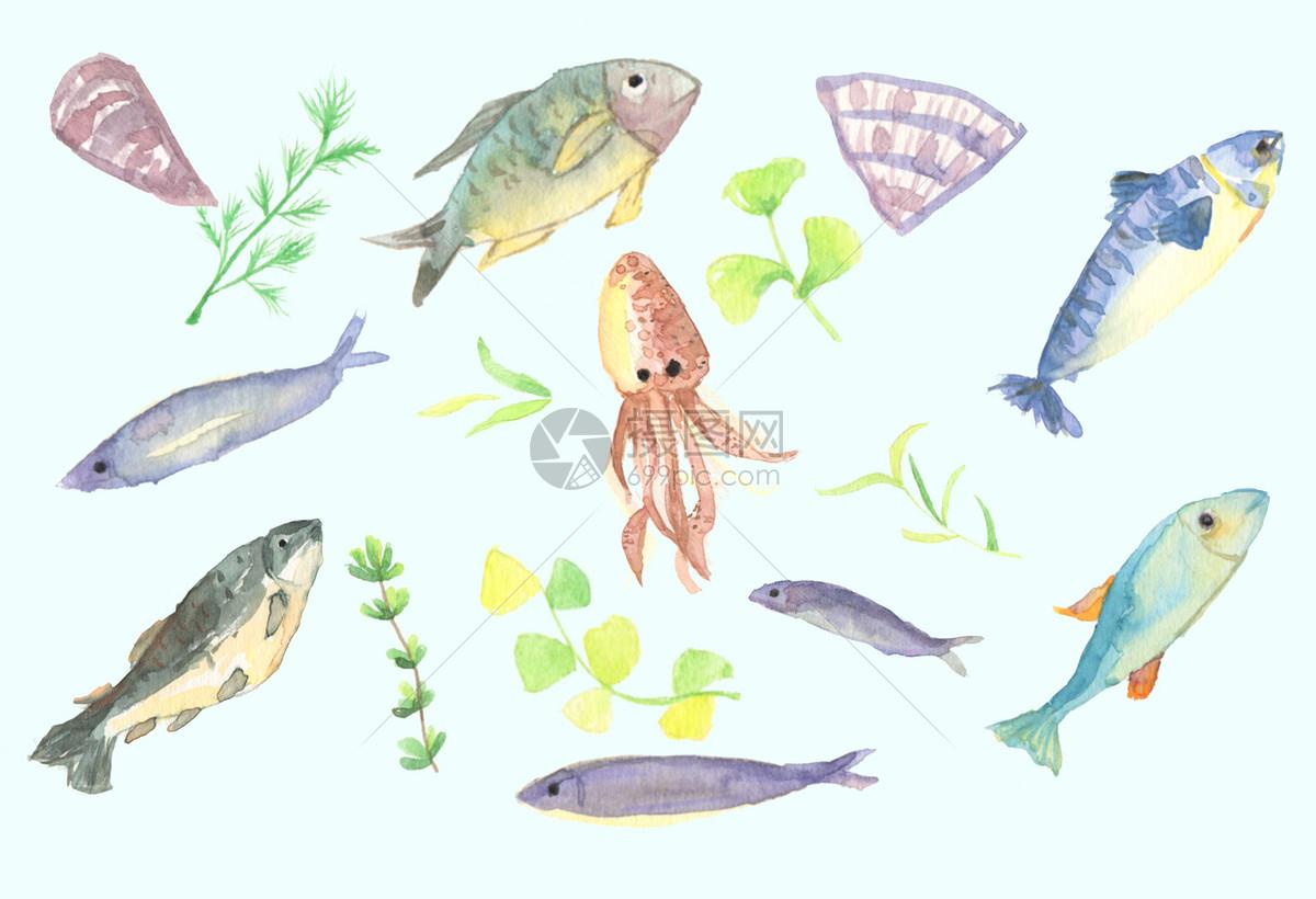 手绘水彩深海鱼