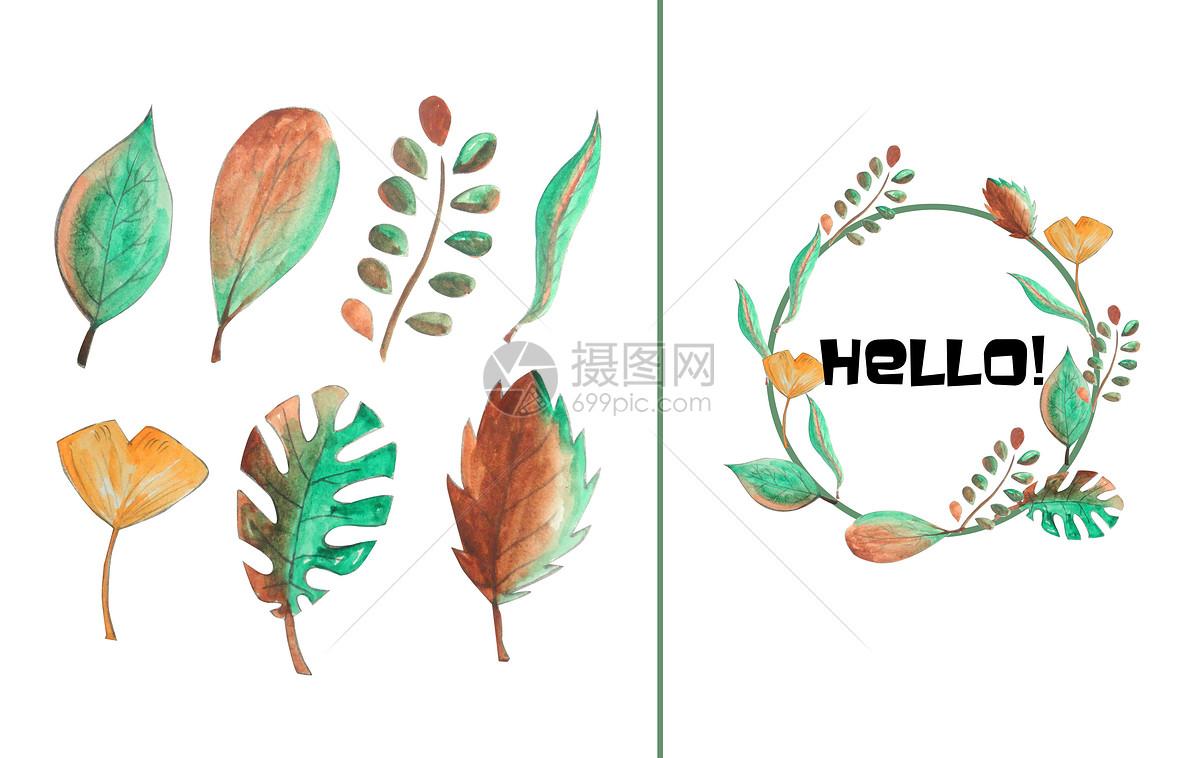 手绘水彩树叶元素