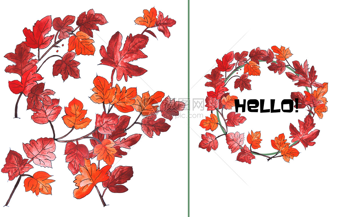 手绘水彩枫叶