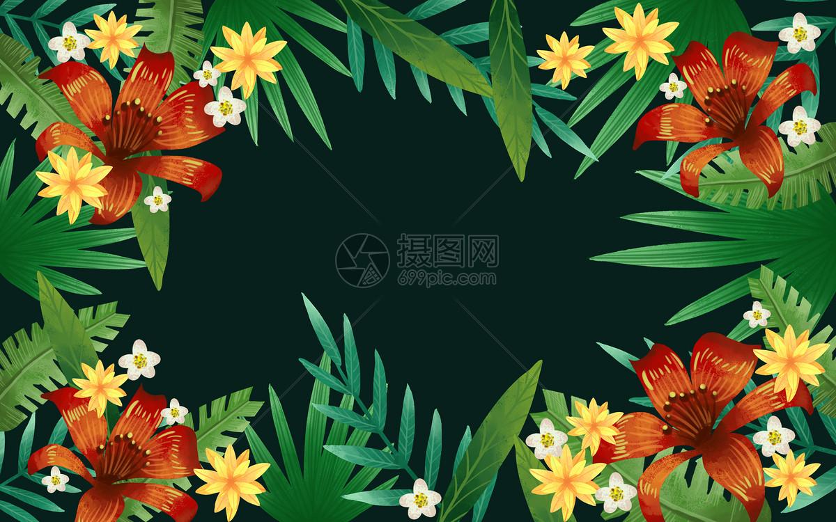 热带花卉素材背景图片