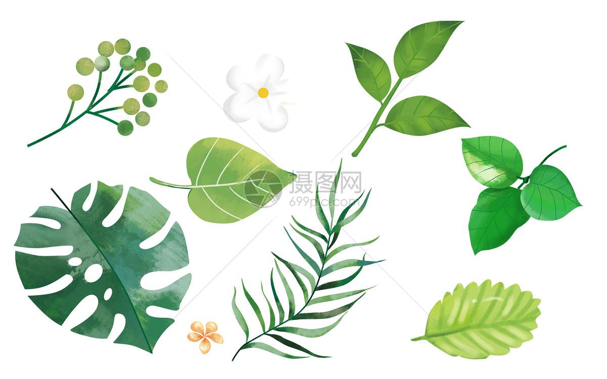手绘热带叶子背景图片素材_免费下载_psd图片格式_vrf