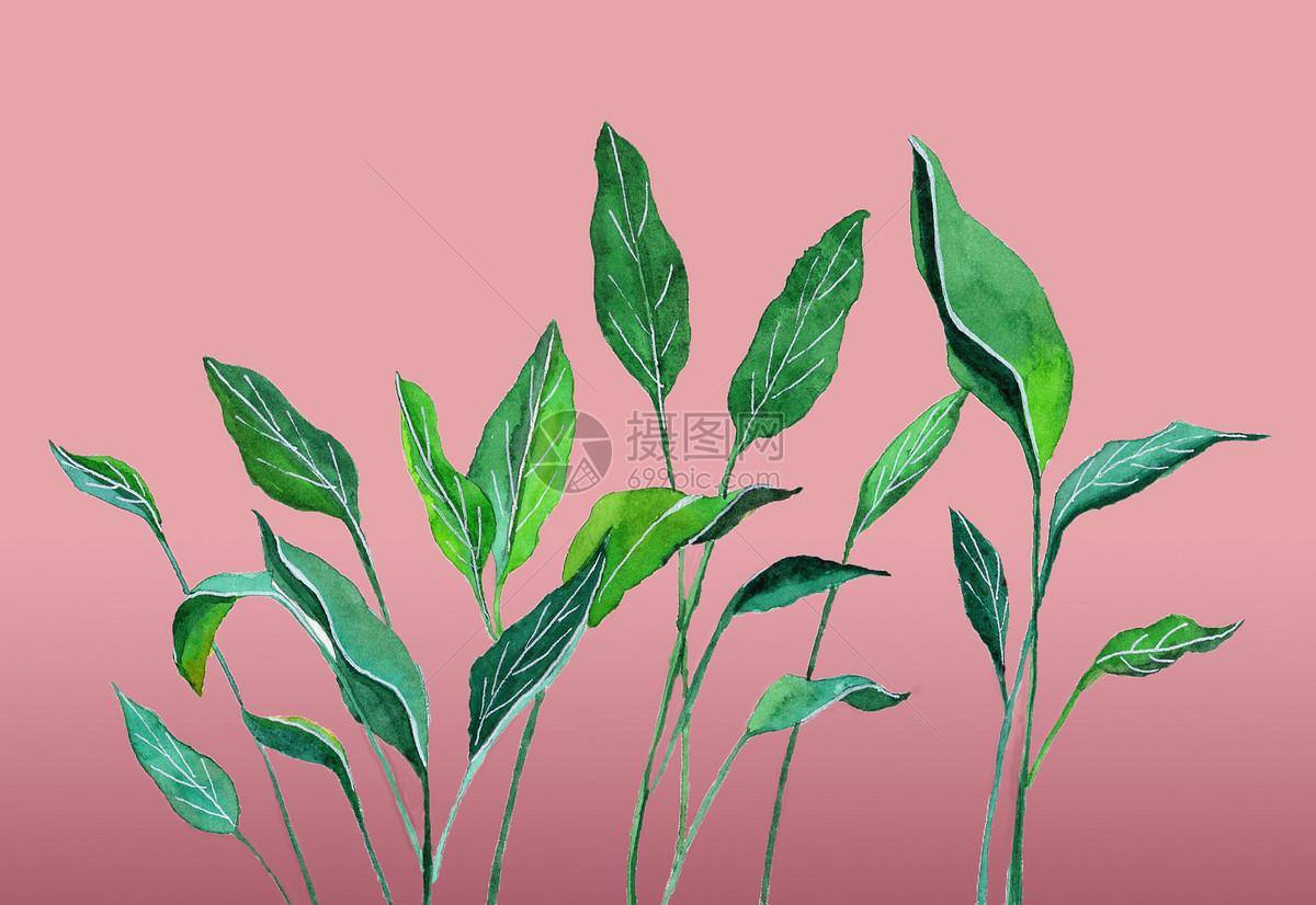 绿植叶子小清新手绘插画显示全部 >>ins风水彩手绘ins风植物叶子图片