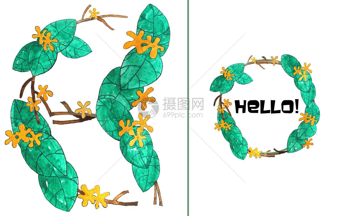 手绘水彩桂花