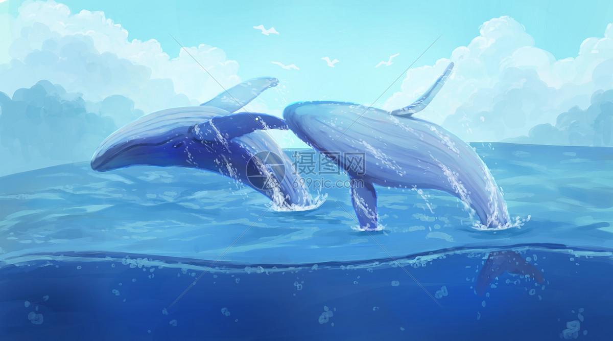 壁纸 动物 海洋动物 桌面 1200_667