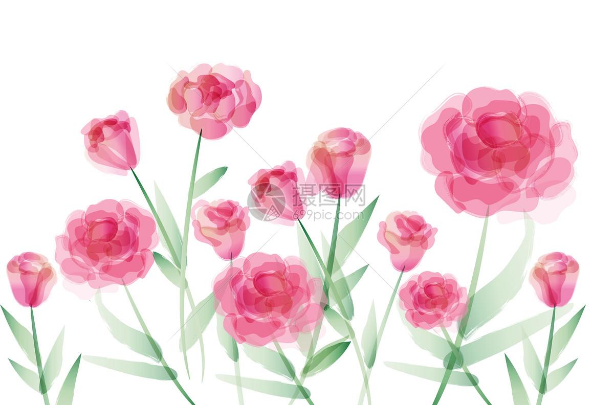 康乃馨花朵图片素材_免费下载_ai图片格式_vrf高清_摄