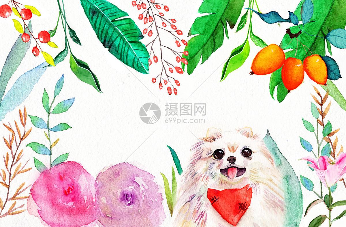 水彩植物动物手绘图片