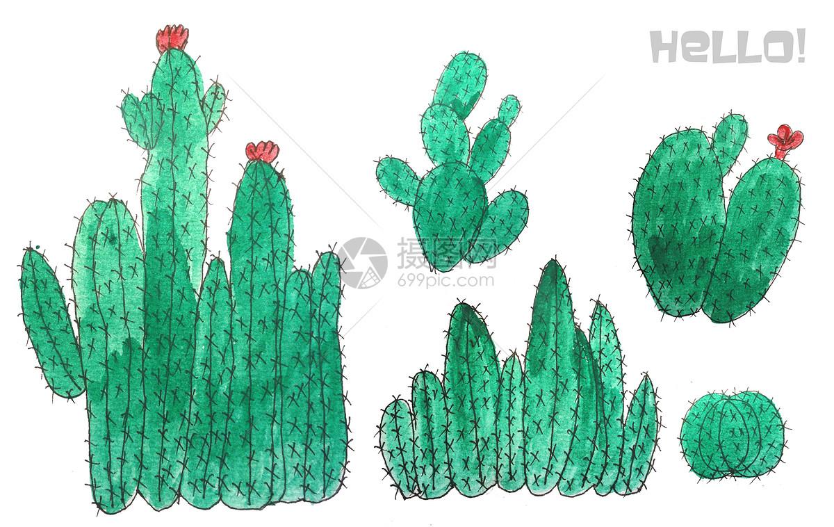 手绘水彩热带仙人掌