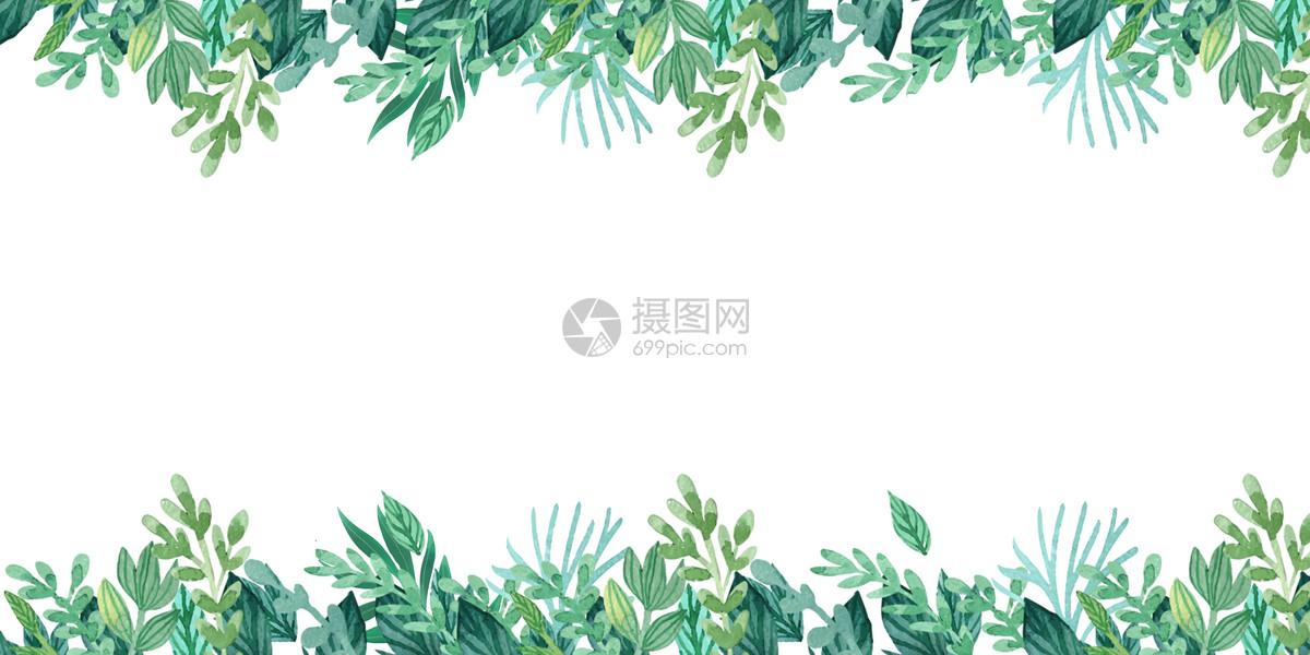 手绘水彩植物背景