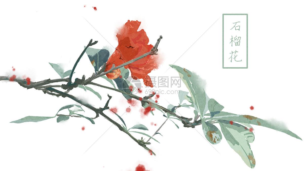 中国风手绘石榴花背景