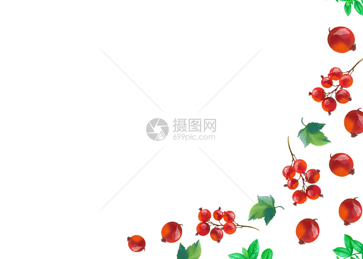 红果子水彩手绘二分之一留白