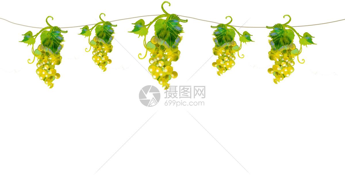 绿葡萄水彩手绘二分之一留白