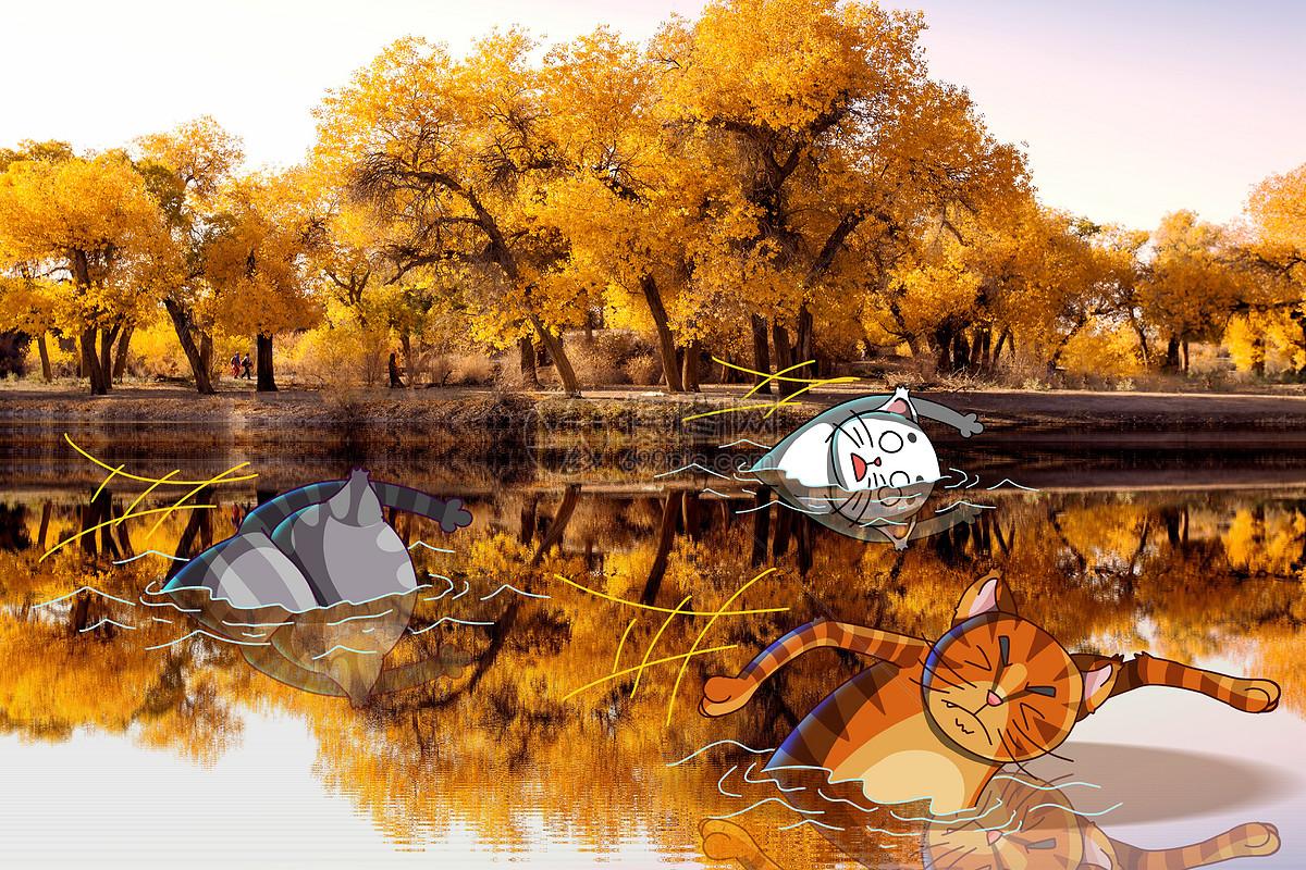 秋季游泳大赛图片