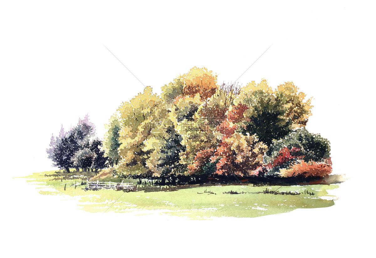 手绘树丛图片