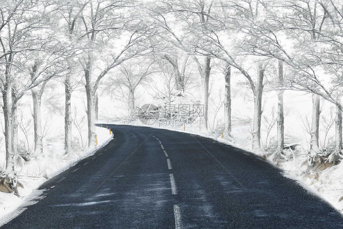 冬天的马路图片