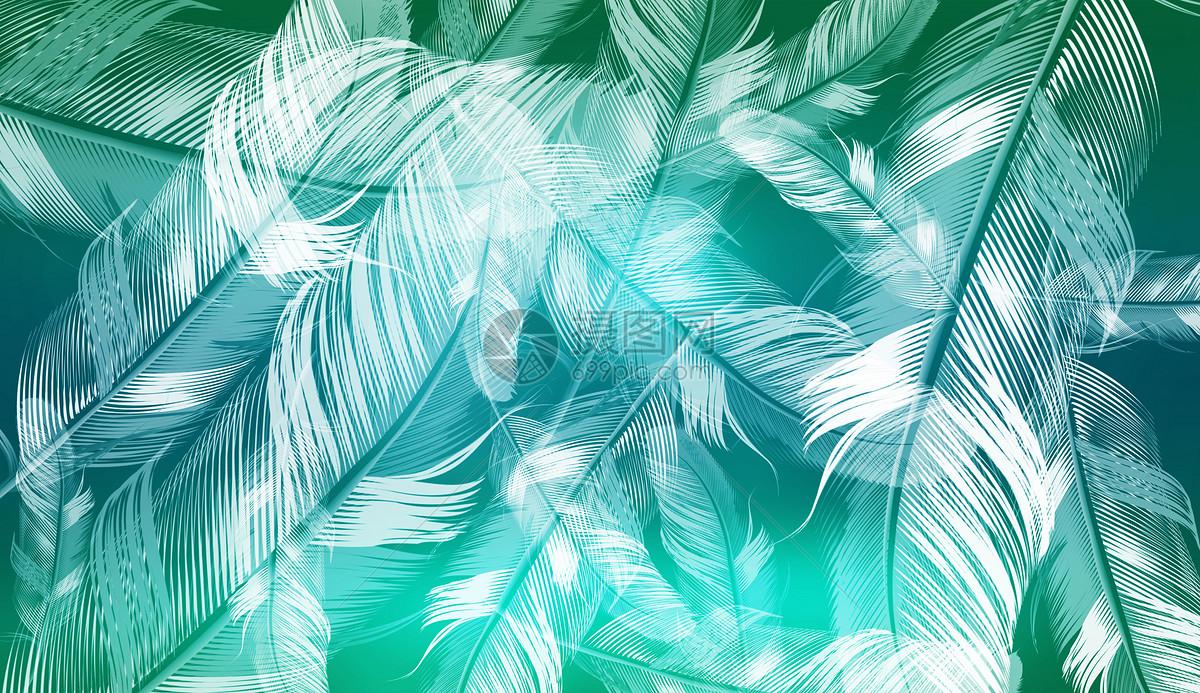 绿色羽毛背景图片