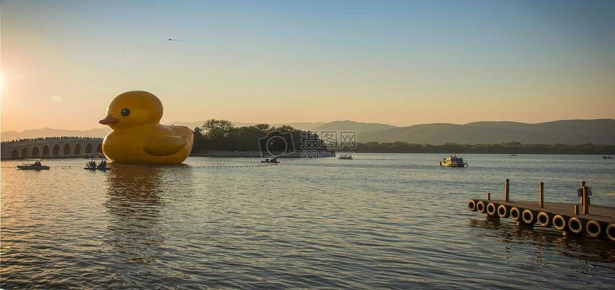 大黄鸭游昆明湖图片