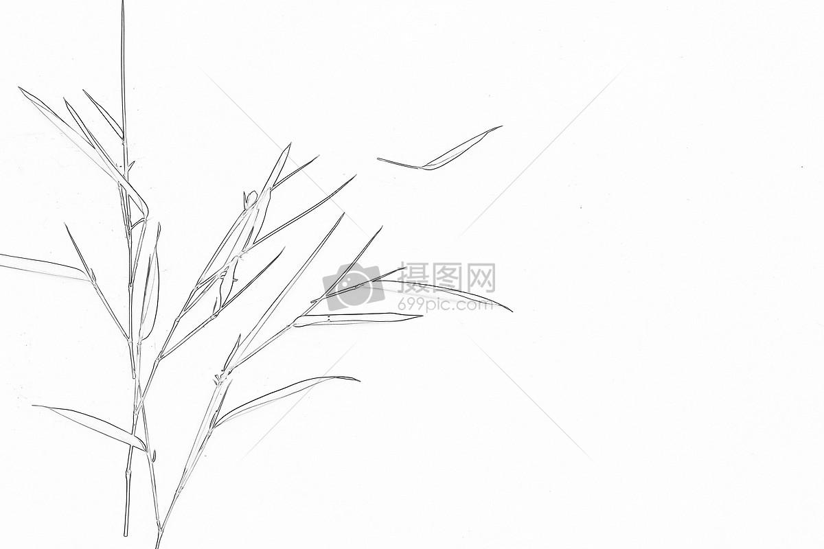 手绘竹子彩色图片