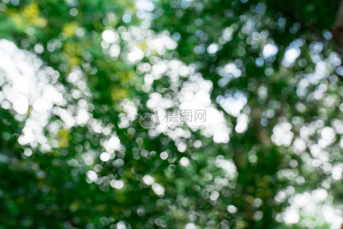自然植物绿色虚化背景素材