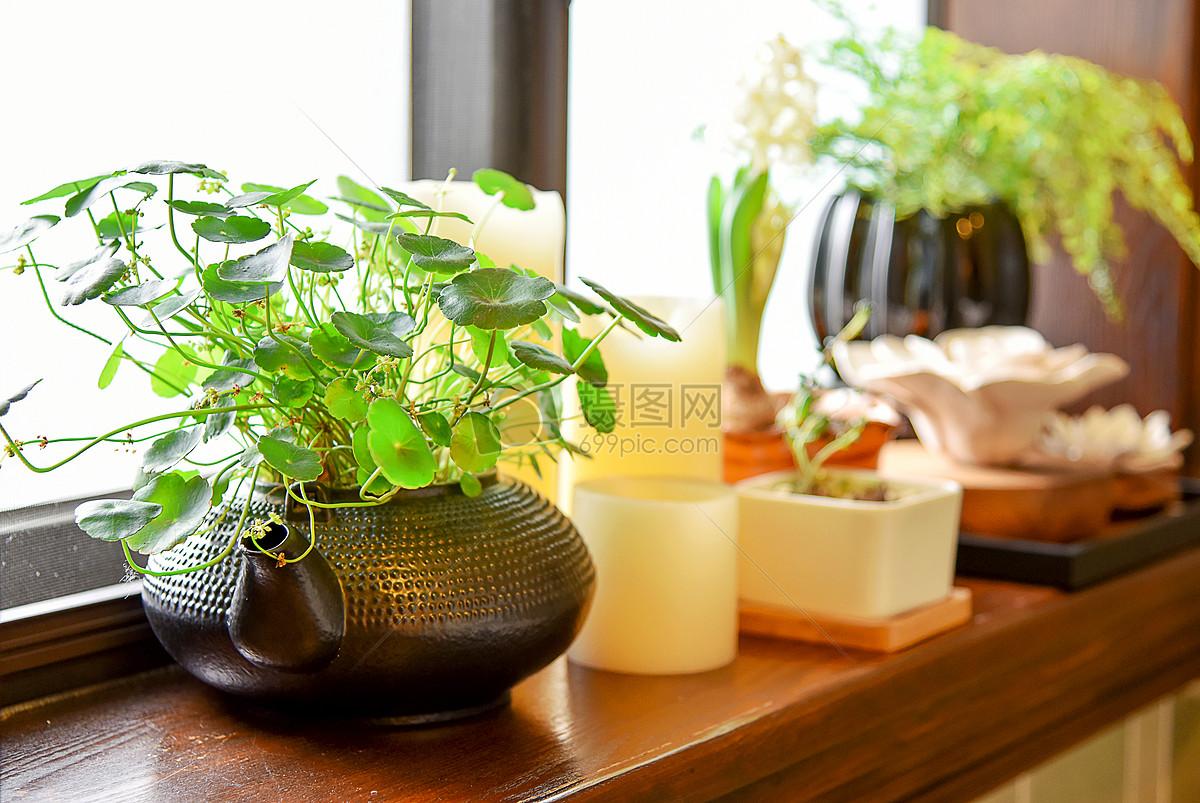 现代简约欧式风格家庭生活小摆件小装饰窗台小盆栽绿色植被