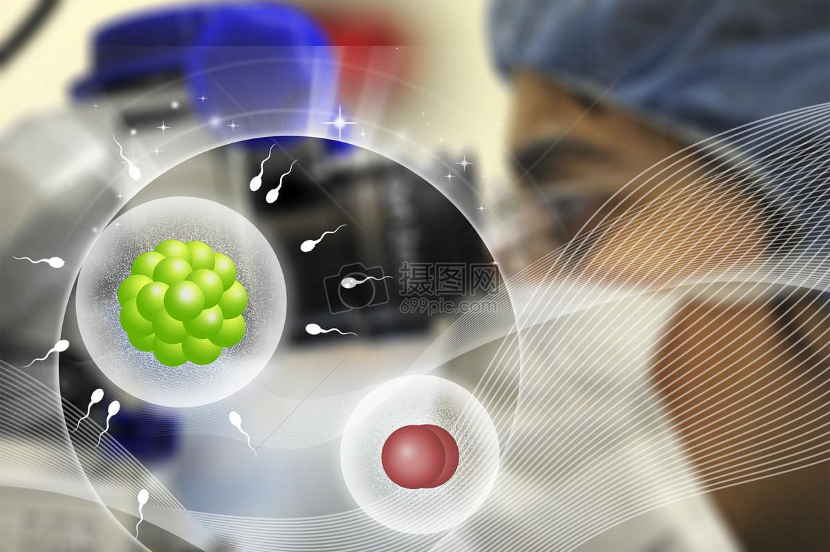 显微镜观察细胞