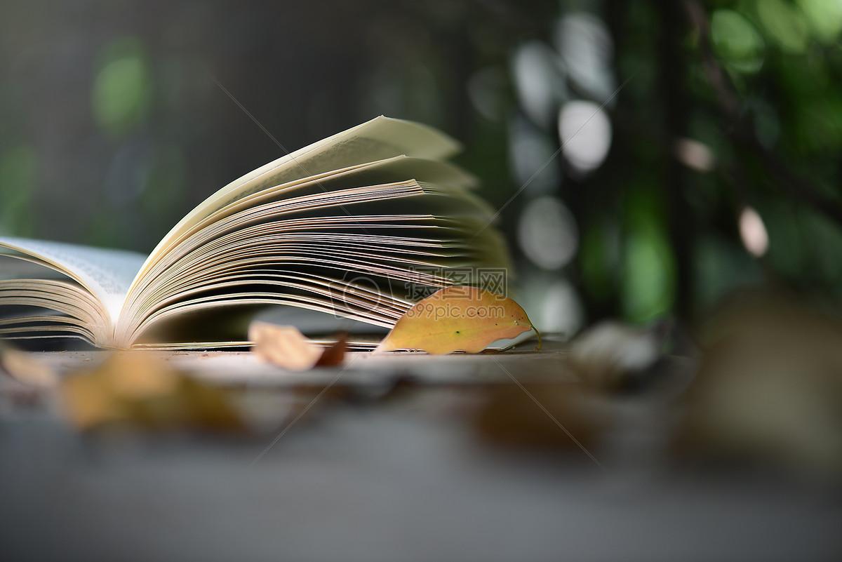 书静物图片