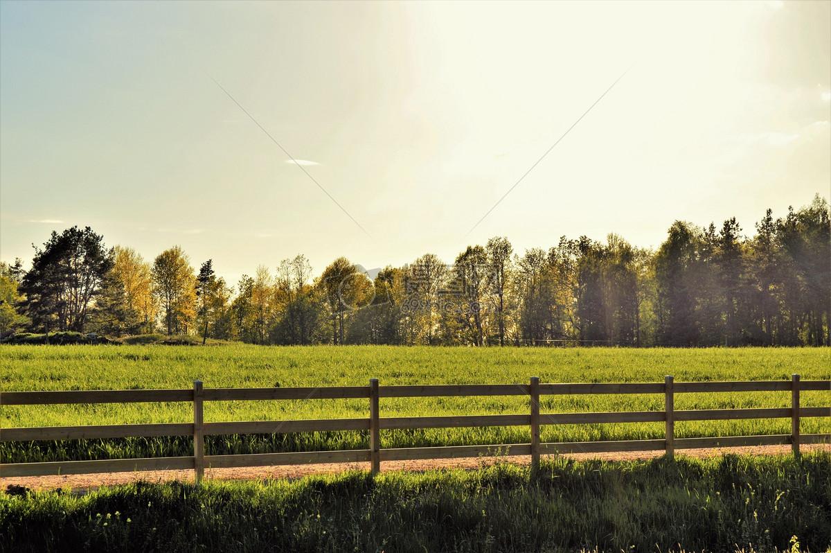 瑞典的阳光牧场摄影图片免费下载_自然/风景图库大全