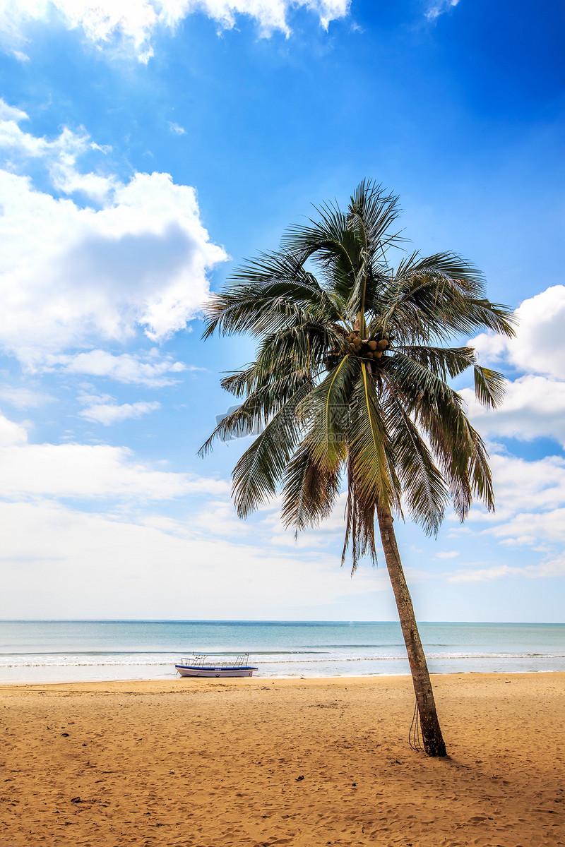 海边风光摄影图片免费下载_自然/风景图库大全_编号