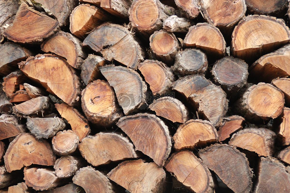 标签: 素材背景自然生态树桩木桩柴火木材木桩图片木桩图片免费下载