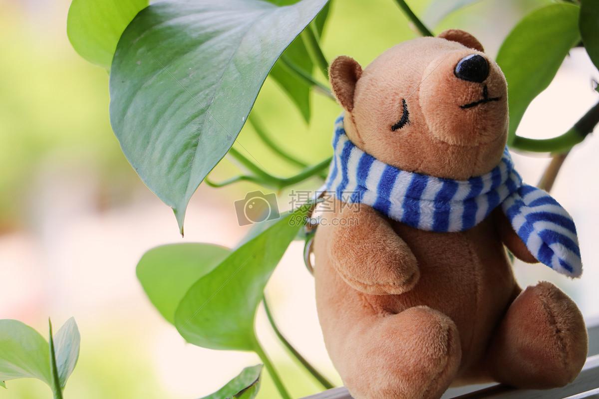 可爱的小熊娃娃