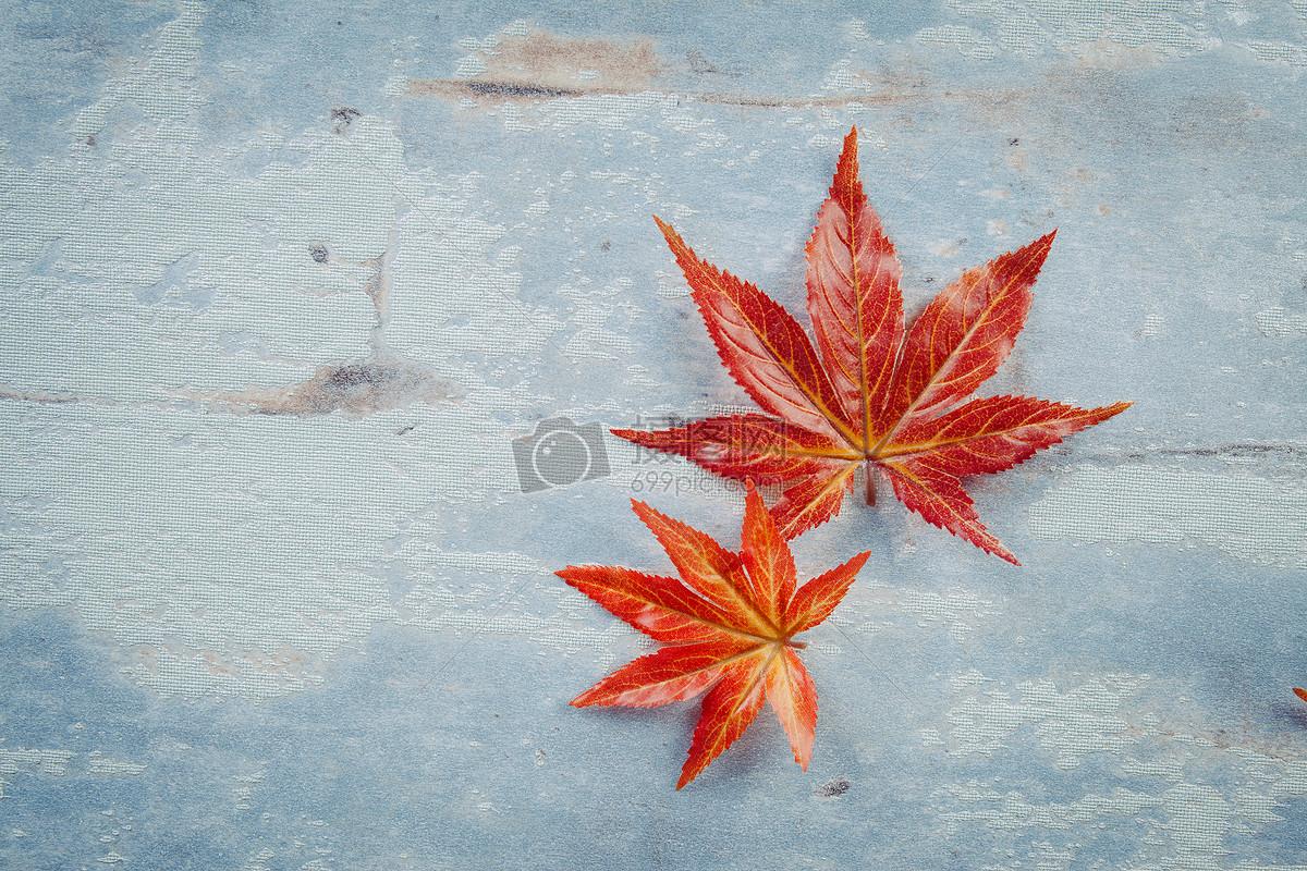 图片 照片 自然风景 立秋文艺风格jpg