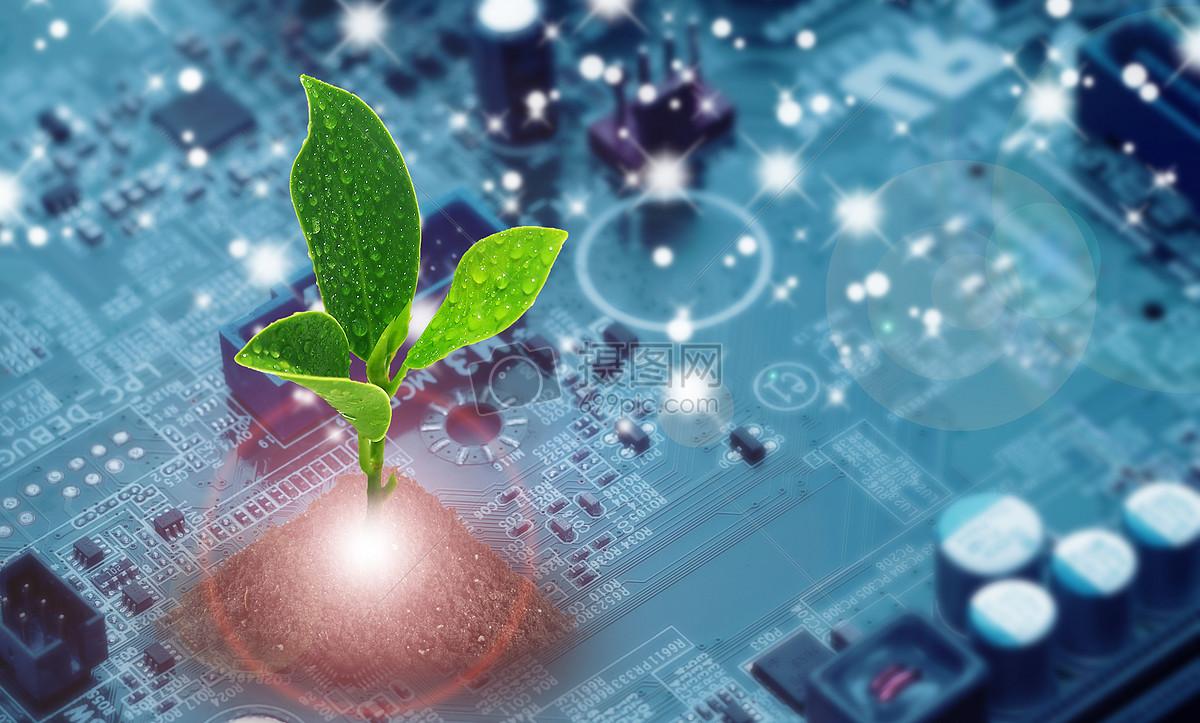发光发芽主板长在计算机电路板上的树苗图片长在计算机电路板上的树苗