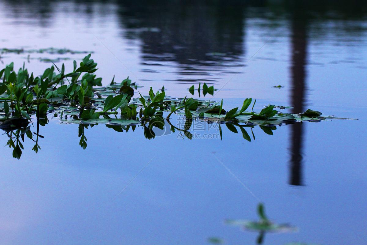 图片 照片 自然风景 河边的诗意jpg  分享: qq好友 微信朋友圈 qq空间
