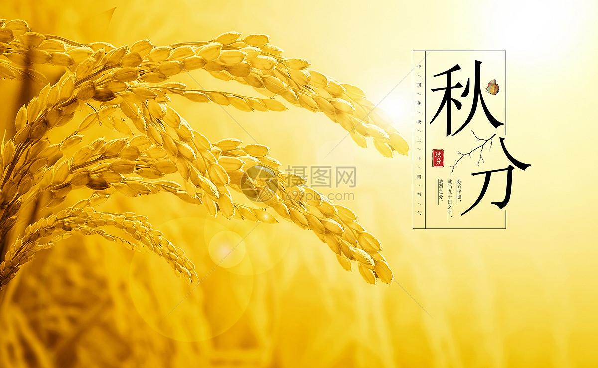 秋分节气小报手绘